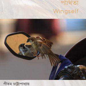 পাখিতা (Wingself)